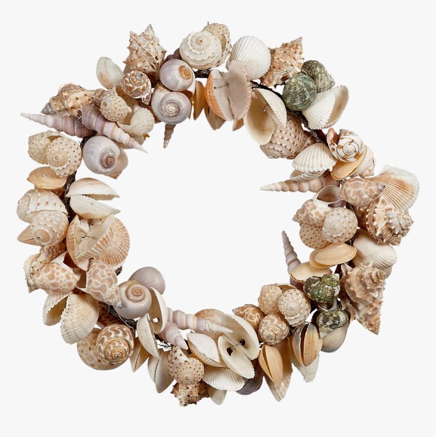 11 - Shell Wreath Png, Transparent Png, Free Download