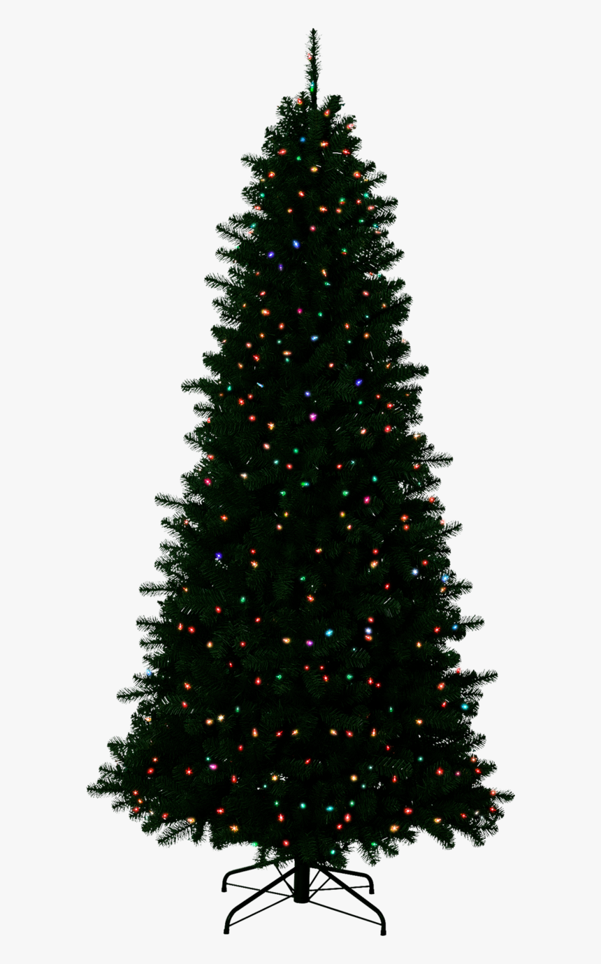 christmas outside transparent background christmas tree with no background hd png download kindpng background hd png download