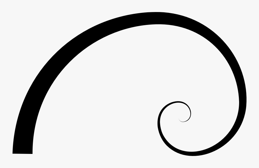 Transparent Fibonacci Spiral Png - Golden Ratio Spiral Png, Png Download, Free Download