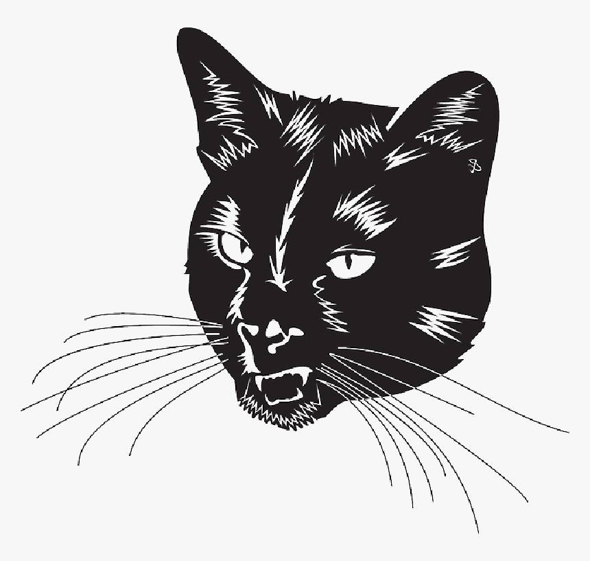 Black Cat Head With Whiskers - Black Cat Head Vector, HD Png Download, Free Download