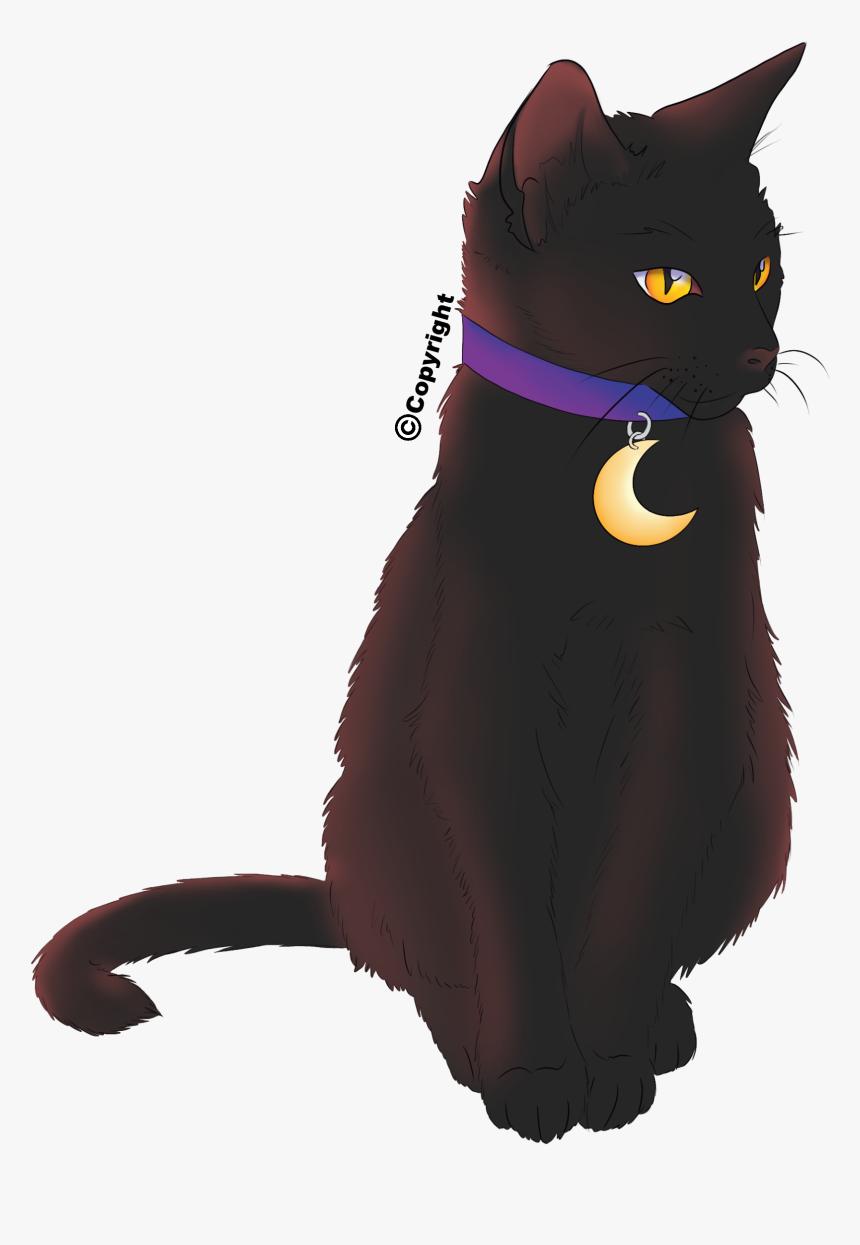 Halloween Black Cat With Moon Collar - Cat Black Cat Halloween Collar, HD Png Download, Free Download