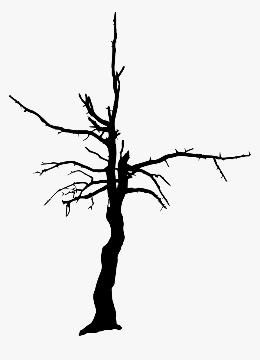 Tree Woody Plant Clip Art - Transparent Background Burnt Trees Silhouette, HD Png Download, Free Download