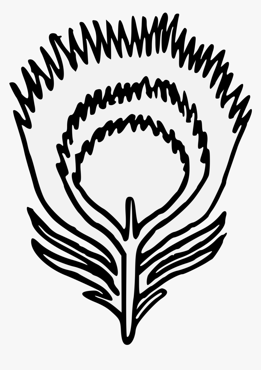 Peacock Feather Logo Png, Transparent Png, Free Download