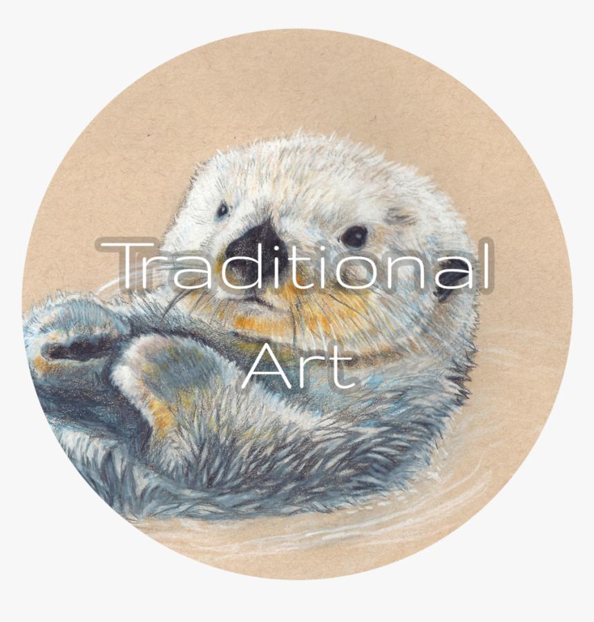 Dan Bingham Art Traditional - Sea Otter, HD Png Download, Free Download