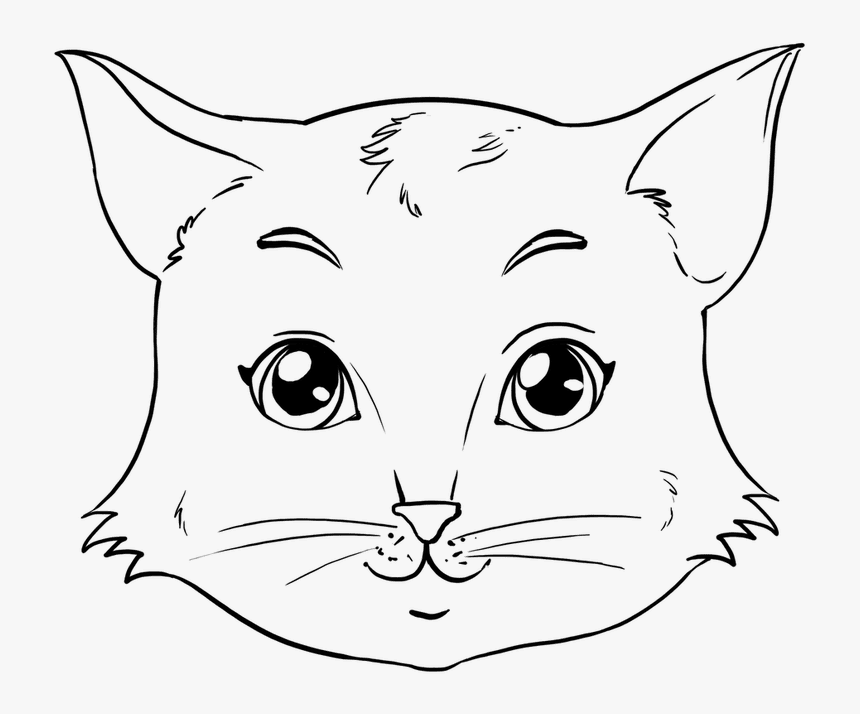 How To Draw A Face Caricature For Beginners Anime In - Easy Cat Face Sketch, HD Png Download, Free Download
