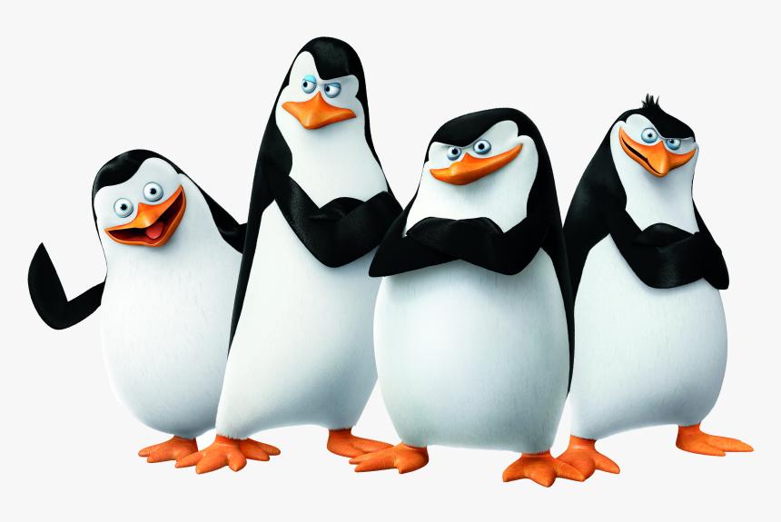 Madagascar Penguins Png - Penguins Of Madagascar Png, Transparent Png, Free Download