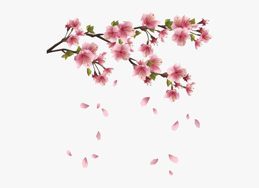 Spring Flowers Branches - Transparent Sakura Flower Png, Png Download, Free Download