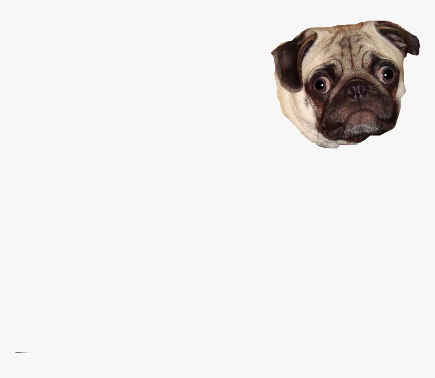 Clip Art For Free Download - Pug, HD Png Download, Free Download
