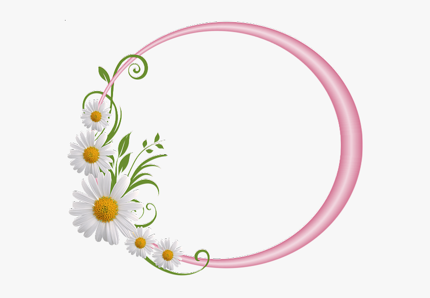 Pink Round Frame With Daisies Borders And Frames, Borders - Floral Round Frame Png, Transparent Png, Free Download