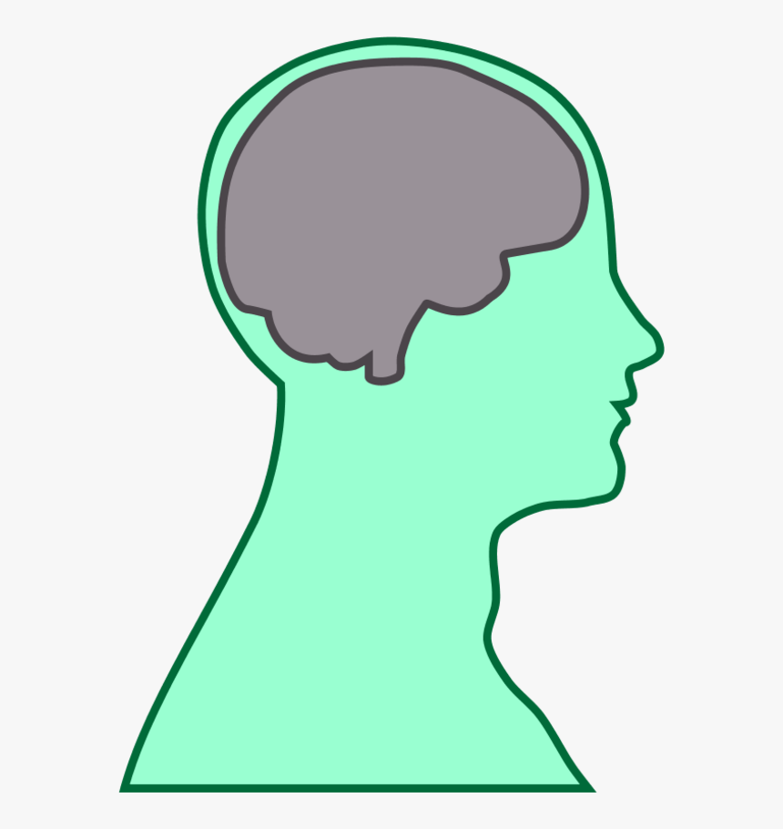 Cartoon Head With Brain, HD Png Download, Free Download