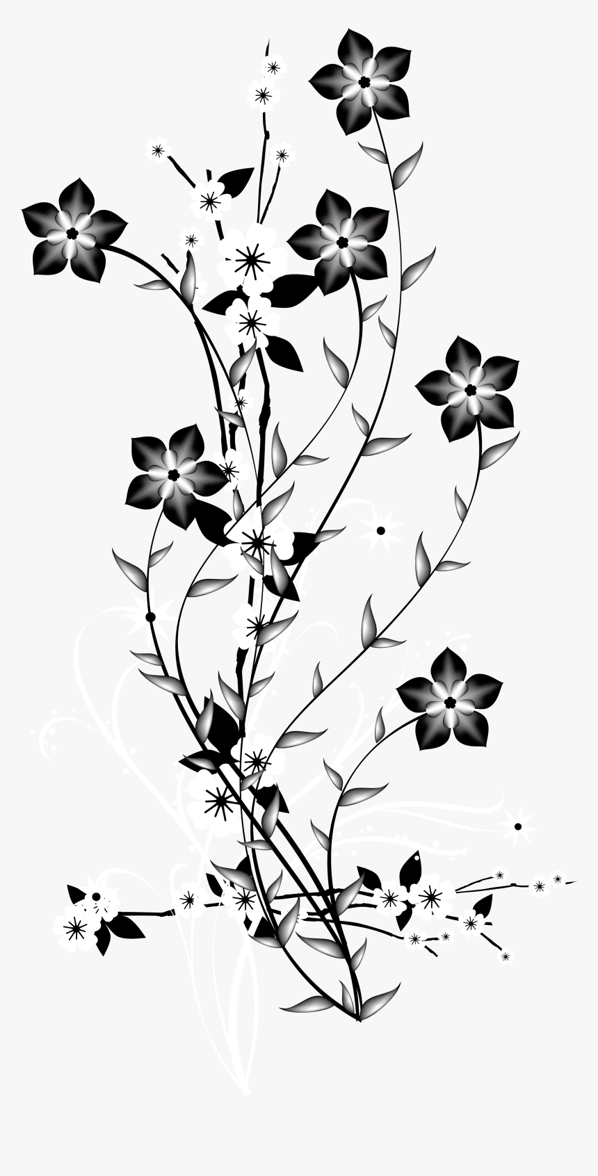 Flower Png Black And White, Transparent Png, Free Download
