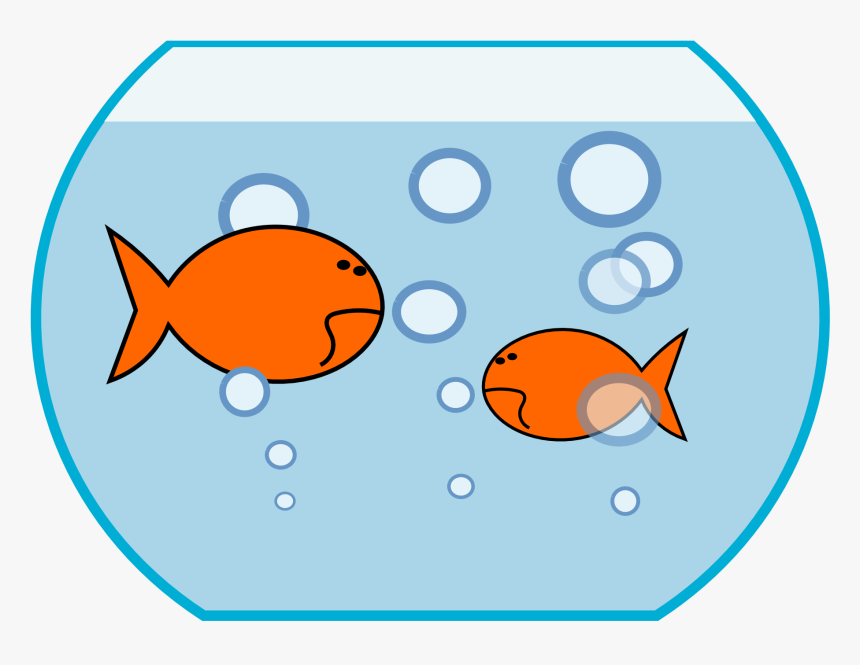 Fish In The Water Clipart, HD Png Download - kindpng