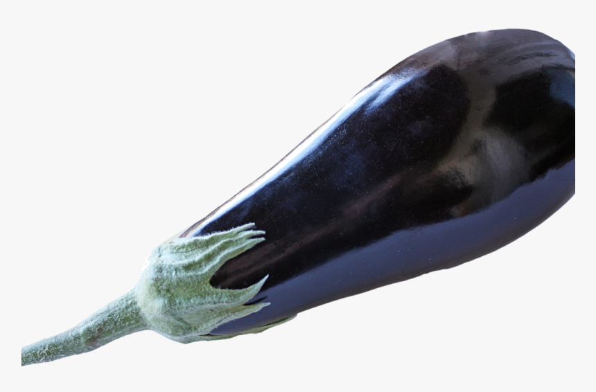 Eggplant, HD Png Download, Free Download
