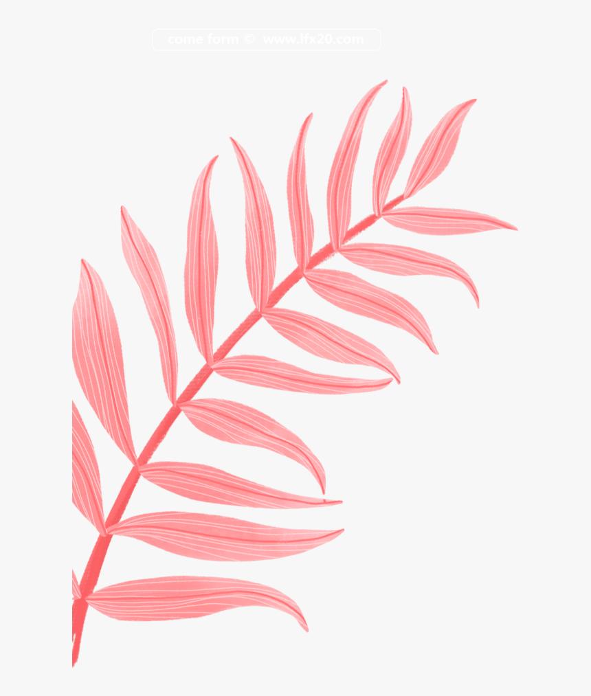 Tropical Red Tumblr Aesthetic Overlay Flower Frame Tumblr