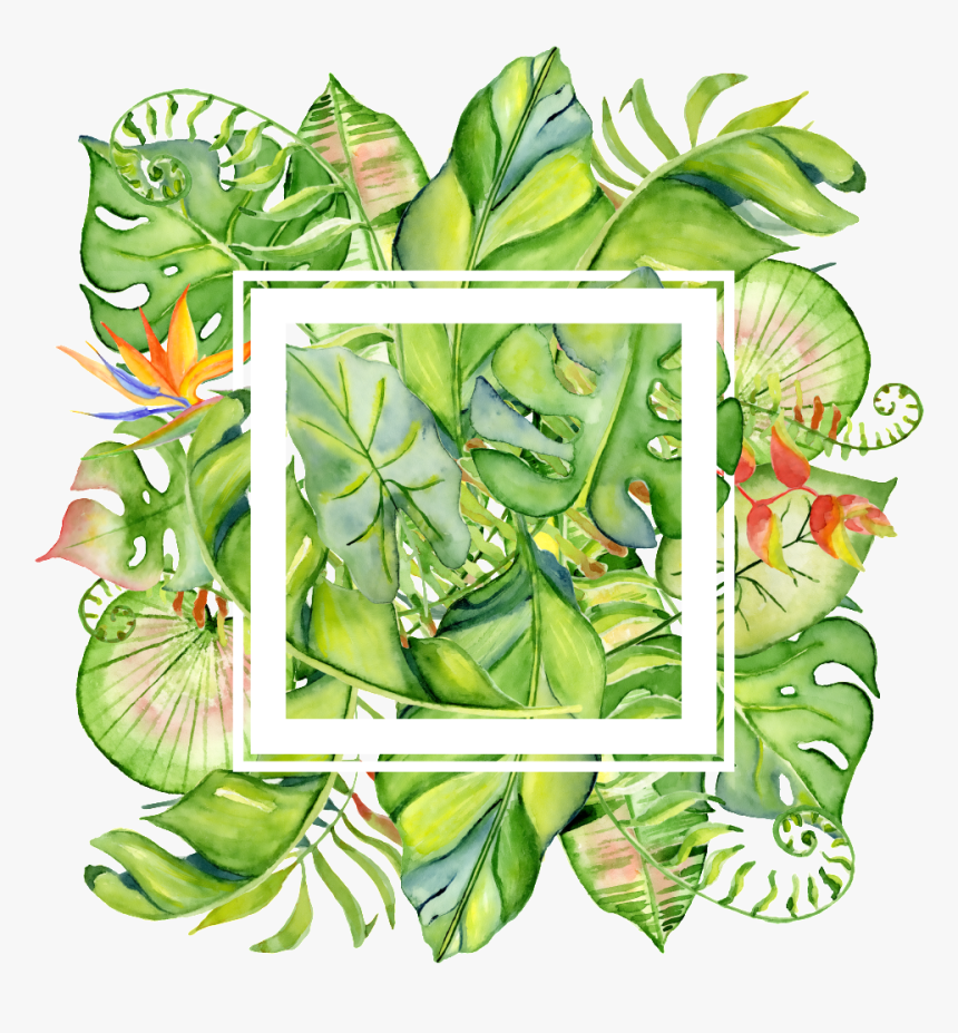 Painted Tropical Leaves Frame Png Transparent About Border Tropical Leaves Png Png Download Kindpng Choose from 40+ tropical leaves border graphic resources and download in the form of png, eps, ai or psd. painted tropical leaves frame png