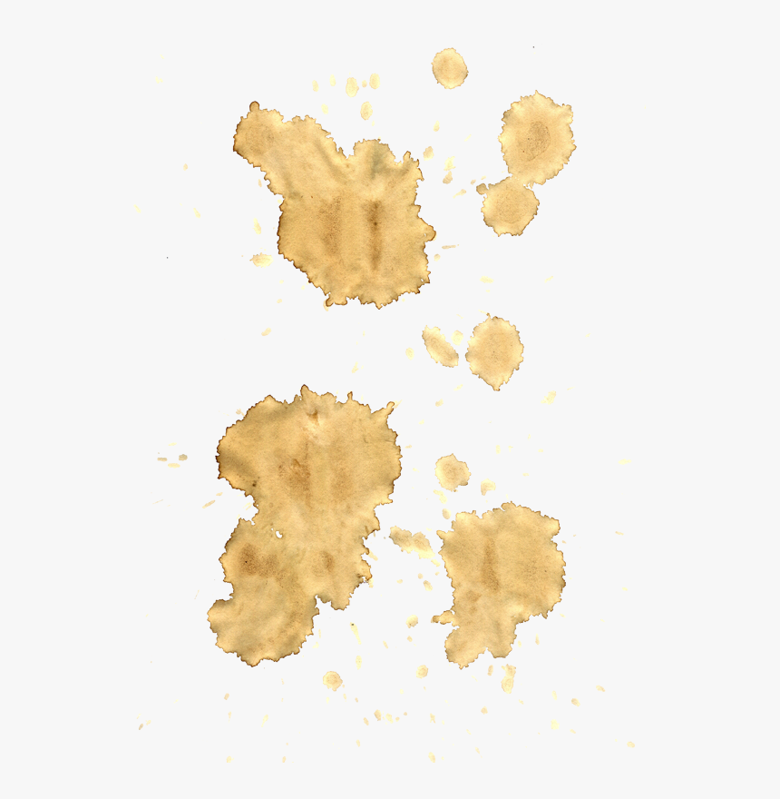 Coffee Stains Png, Transparent Png, Free Download