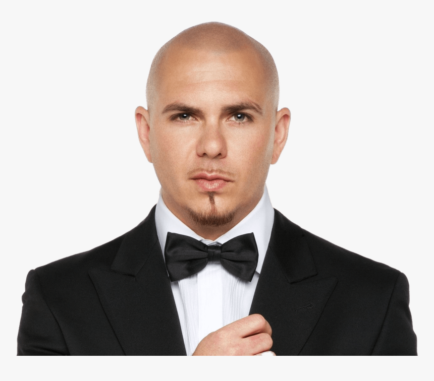 Pitbull With Bow Tie - Pitbull Singer, HD Png Download, Free Download