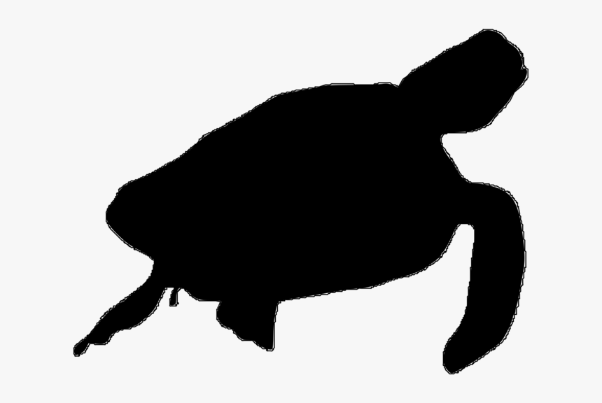 Silhouette Of A Sea Turltle, HD Png Download, Free Download