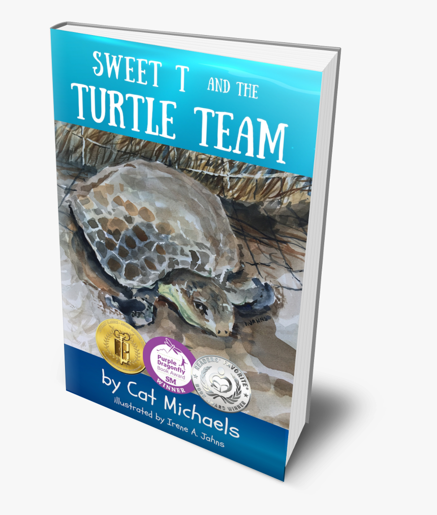 Kemp's Ridley Sea Turtle, HD Png Download, Free Download