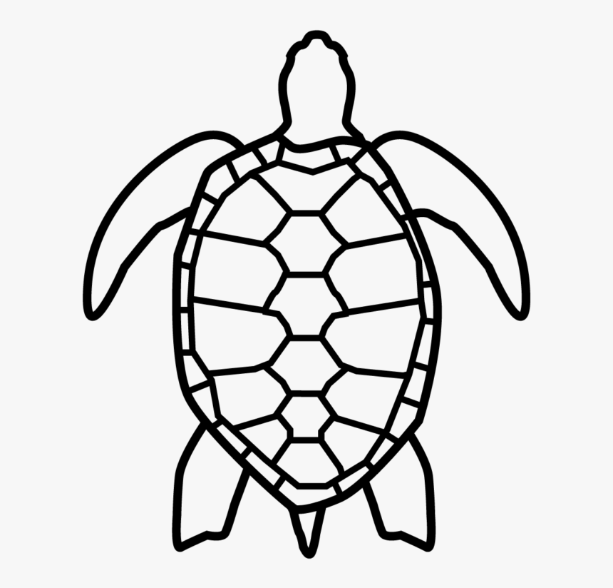 Sea Turtle Icon Transparent, HD Png Download, Free Download