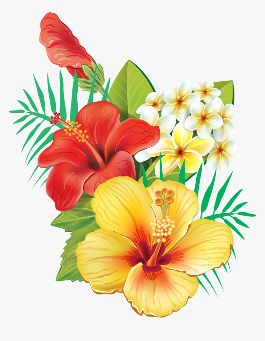 Hawaiian Tropical Flowers Png, Transparent Png, Free Download