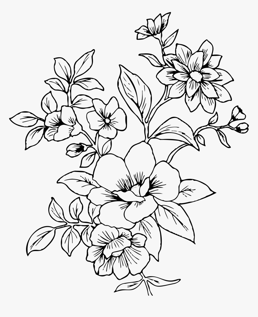 Transparent Flower Drawing Png Flower Line Drawing Png Png Download Kindpng