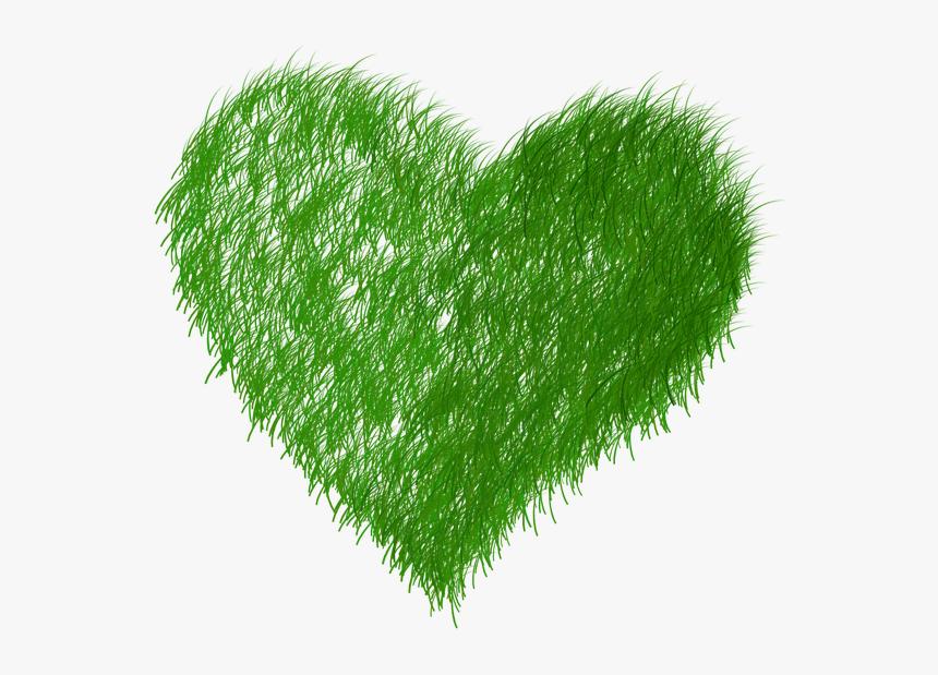 Echo, Ecology, Green, Grass, Prato - Dibujo Ecologia Imagenes Png, Transparent Png, Free Download