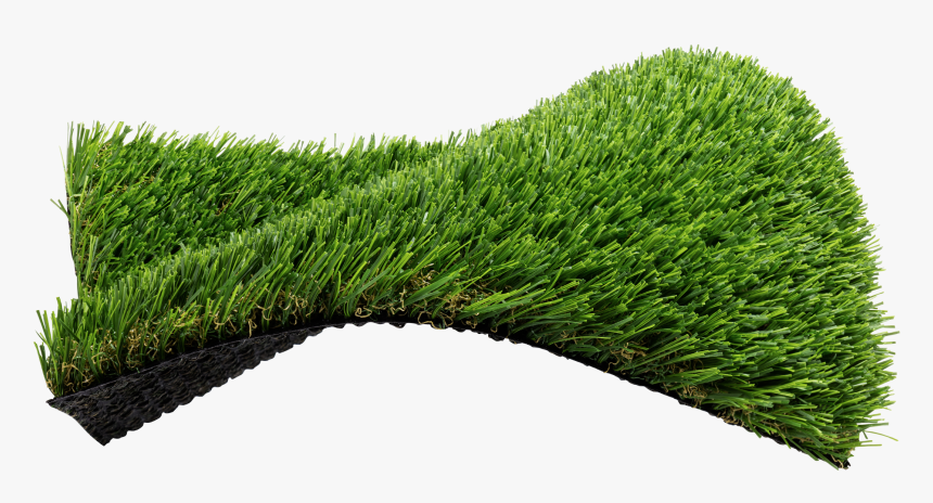 Lawn, HD Png Download, Free Download