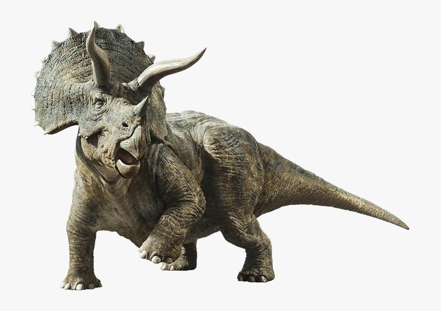 Jurassic World Fallen Kingdom Jurassic World Dinosaurs Triceratops Hd Png Download Kindpng To search on pikpng now. jurassic world fallen kingdom