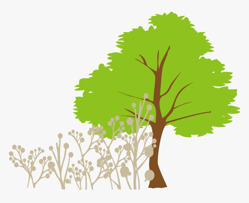 Tree Euclidean Vector Clip Art - Tree Vector Png Free, Transparent Png, Free Download