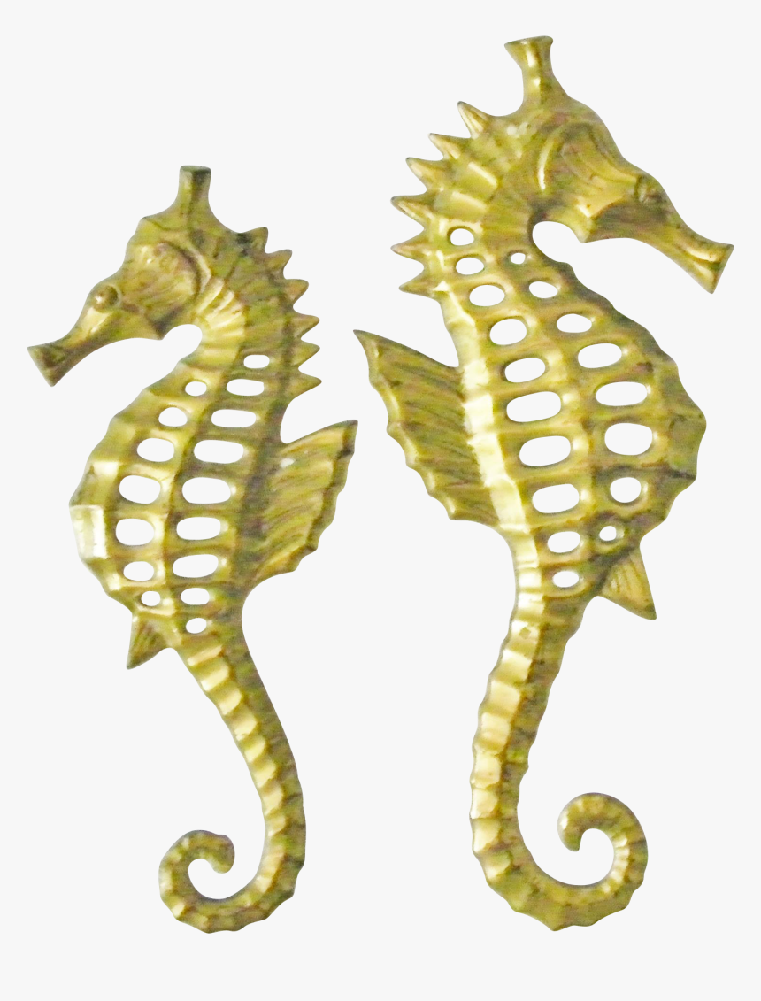 Seahorse , Png Download - Hippocampus Bleekeri, Transparent Png, Free Download