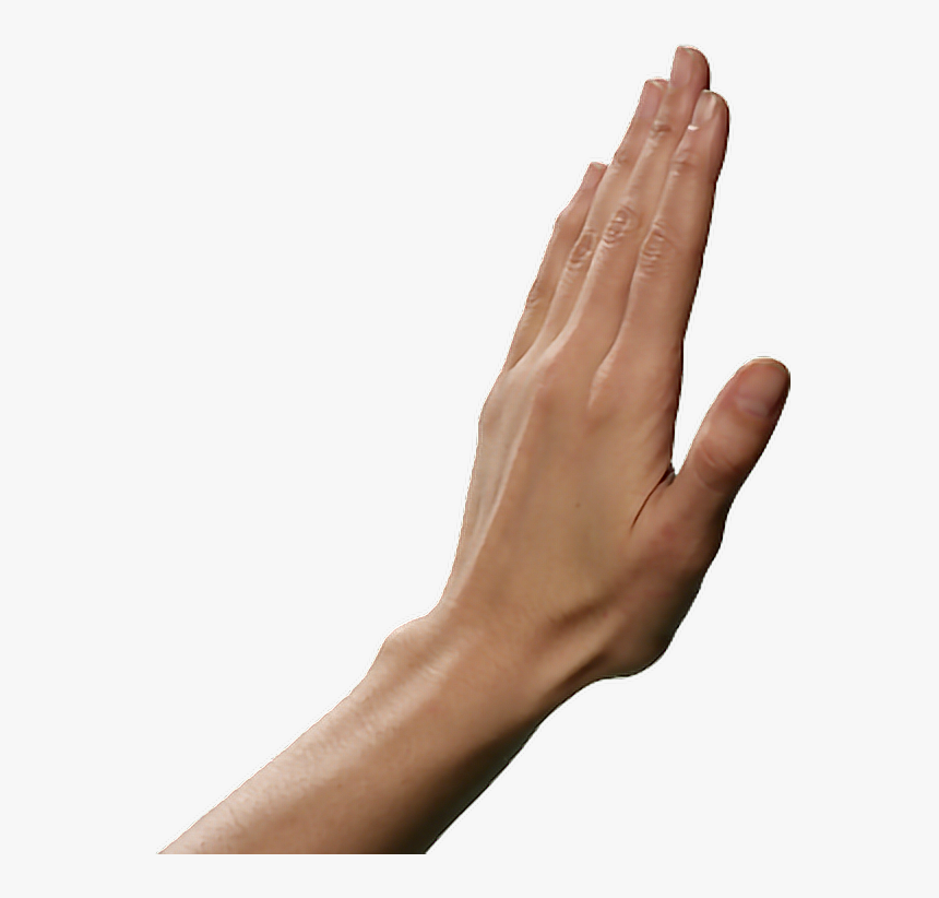 Open Hands Finger Open Hand Png Transparent Png Kindpng Over 3546 hand png images are found on vippng. open hands finger open hand png