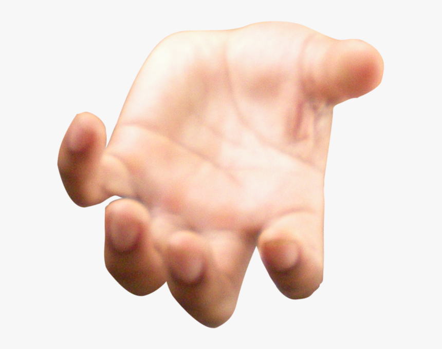 Open Hand Large - Hand Png Open Hand, Transparent Png, Free Download
