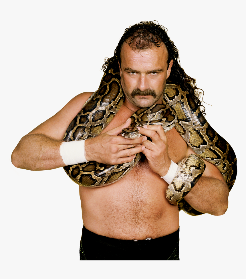 Jake The Snake Roberts Pro - Jake The Snake Roberts Autograph, HD Png Download, Free Download