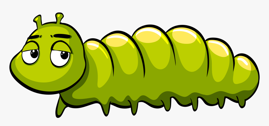 Royalty Free Caterpillar Illustration Green Caterpillar Cartoon