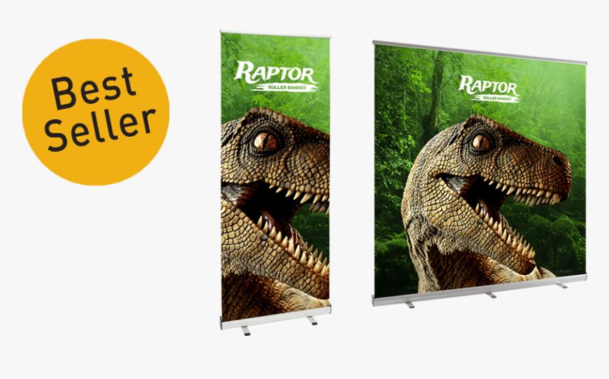 Arrow Print Pull Up Banner - Lesothosaurus, HD Png Download, Free Download