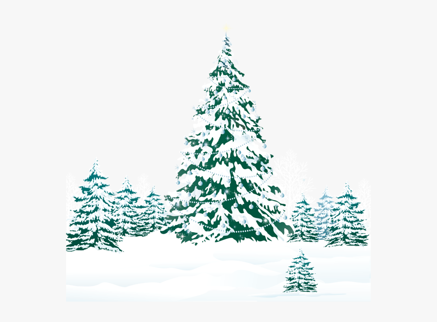 Snowy Winter Ground With Trees Png Clipart Image - Christmas Wishes Images Hd, Transparent Png, Free Download