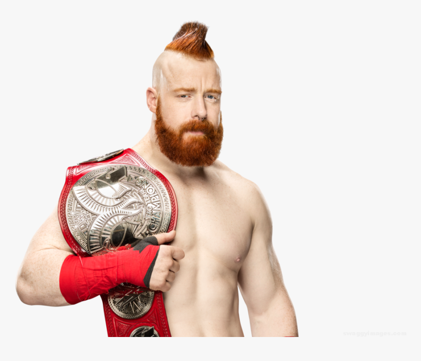 Transparent Cesaro Png - Hardy Boyz Vs Sheamus And Cesaro, Png Download, Free Download