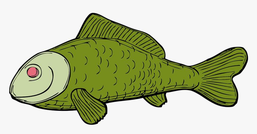 Fish, Green, Aquatic, Fins, Scale - Dead Fish Cartoon No Background, HD Png Download, Free Download