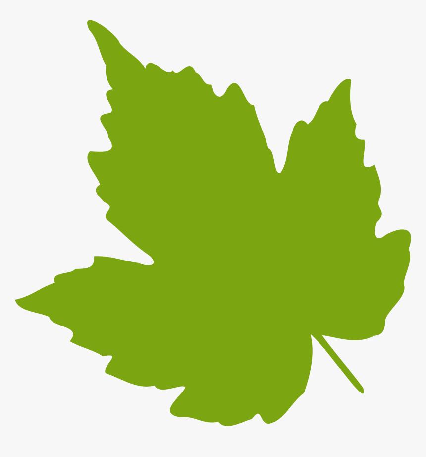 Collection Of Free Vector Pumpkin Leave Download On Green Leaf Clip Art Hd Png Download Kindpng