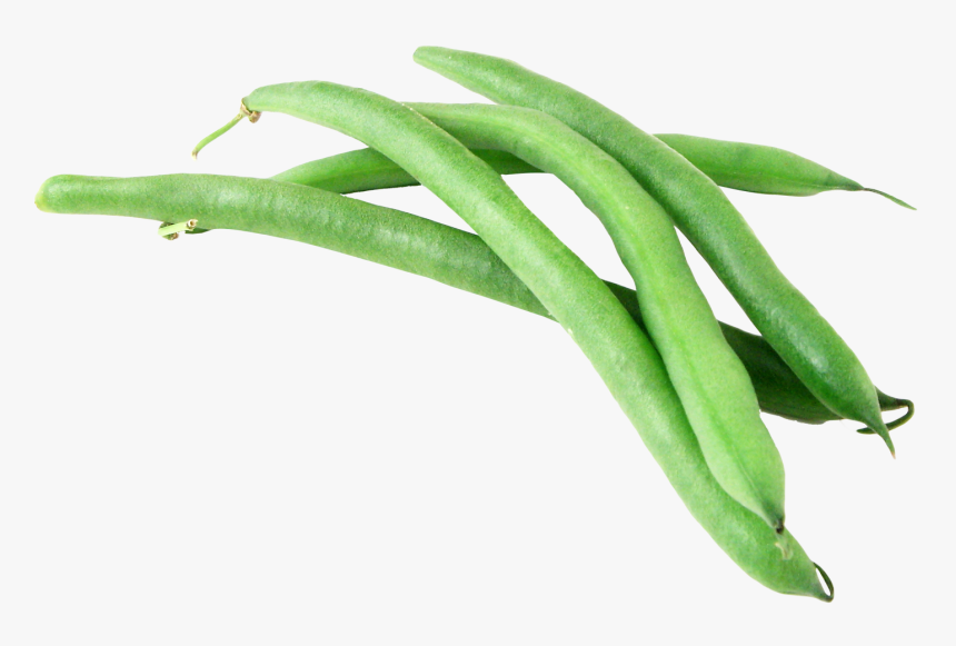 Green Bean Png - Green Beans Transparent Background, Png Download, Free Download