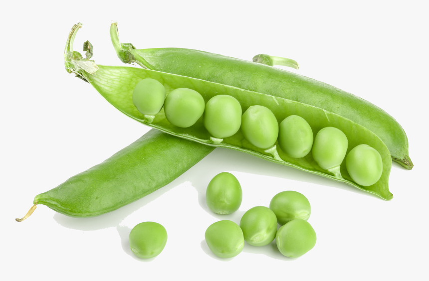 Green Beans Png, Transparent Png, Free Download