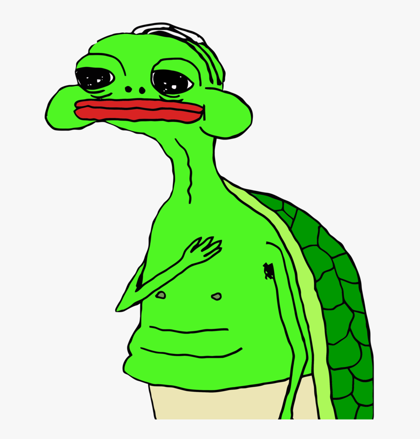 Original Ms Painting Of A Turtle Looking Forlorn Holding - Oh My Gawd Turtle Meme, HD Png Download, Free Download