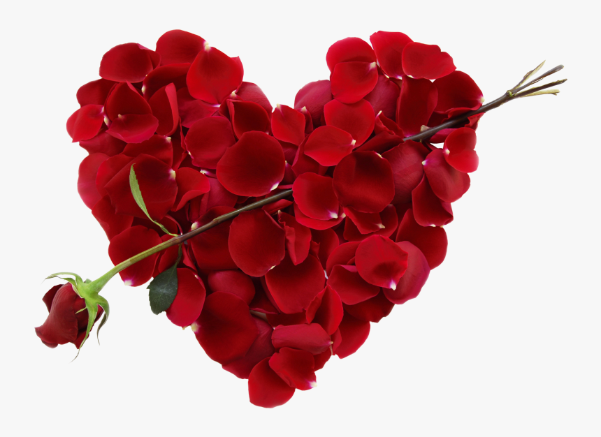 Transparent Real Heart Png - Valentines Day Flower Heart, Png Download, Free Download