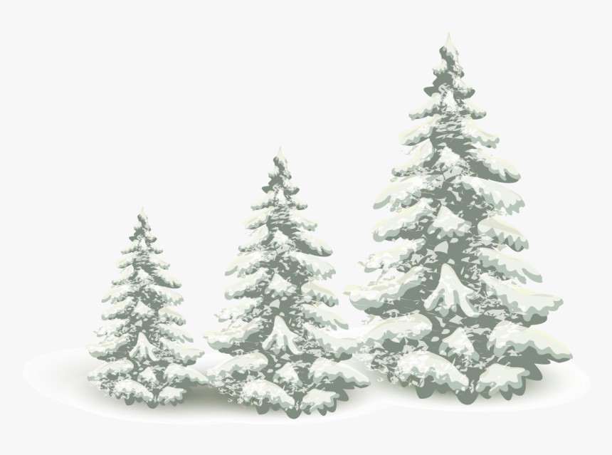 Falling Snow Pine Tree Png Download - Winter Pine Tree Png, Transparent Png, Free Download