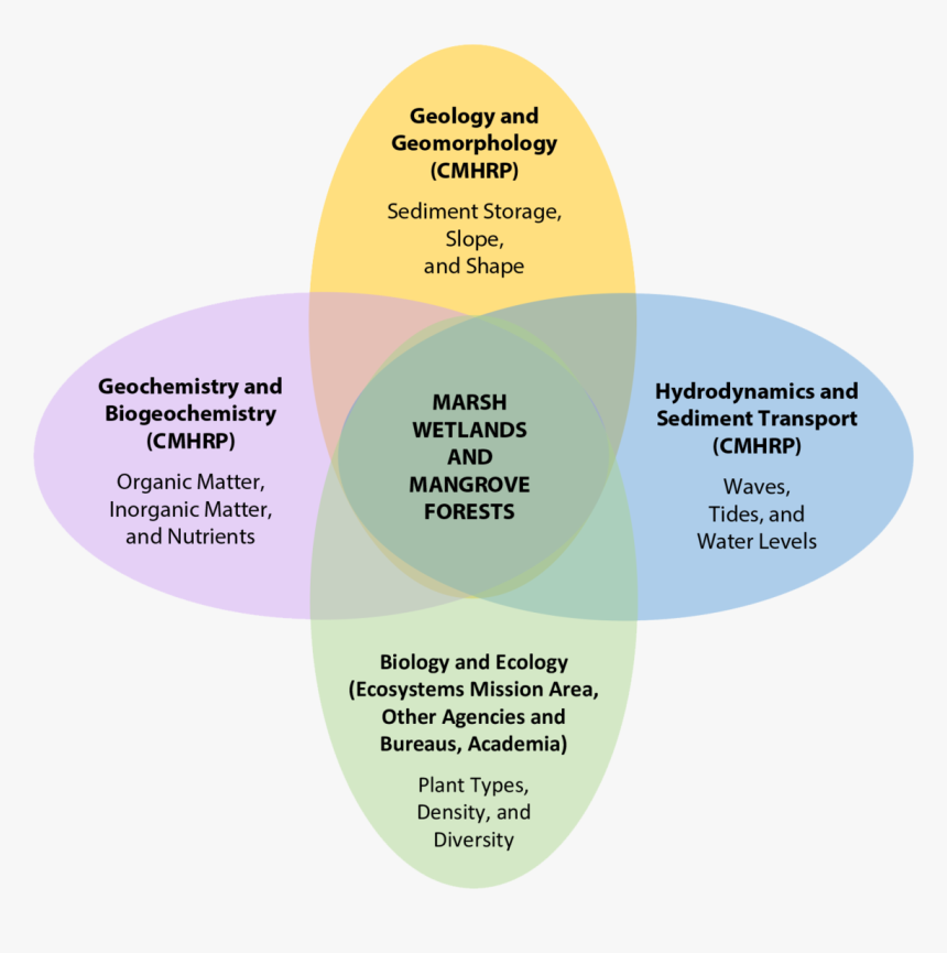 Venn Diagram Highlighting Important Controls On Living - Nutrients And Energy Interact In An Ecosystem Venn, HD Png Download, Free Download