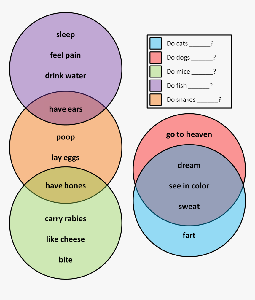 Snake And Worm Venn Diagram, HD Png Download, Free Download