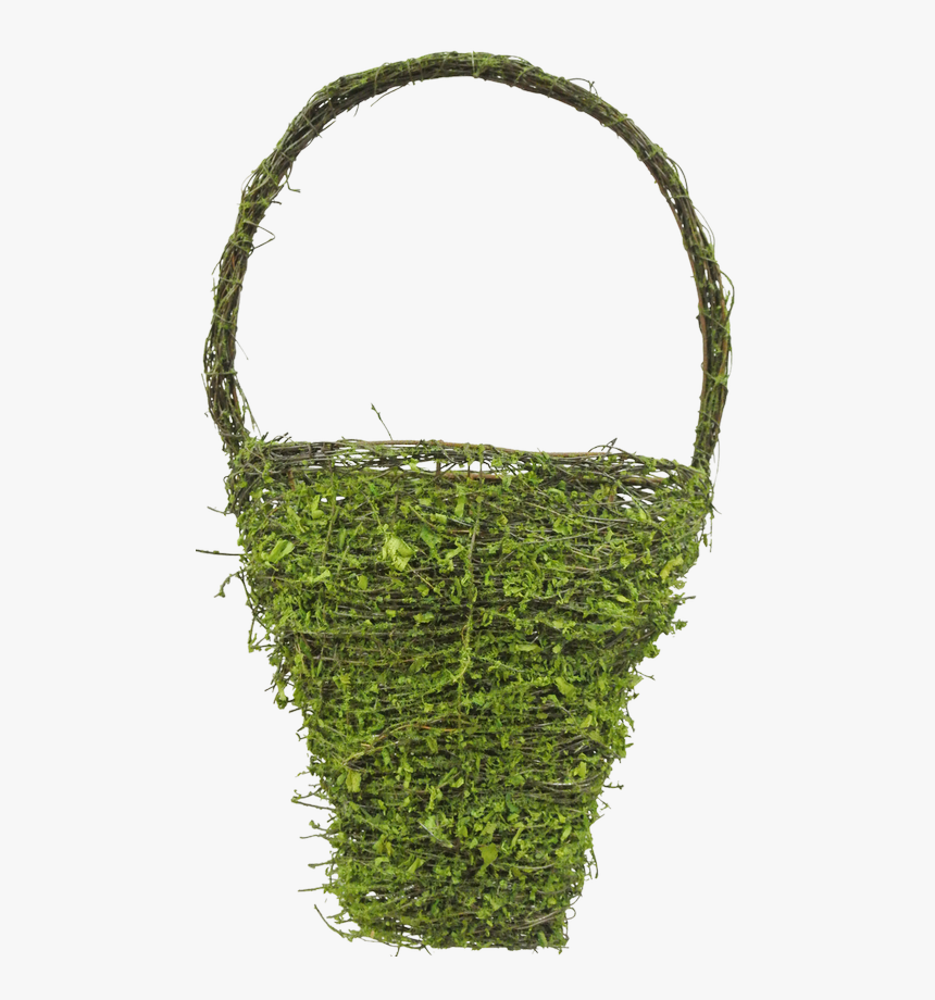 Transparent Moss Png - Moss, Png Download, Free Download