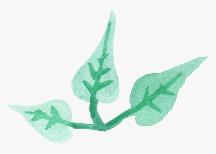 Leaf Png Transparent - Transparent Png Watercolor Leaf, Png Download, Free Download