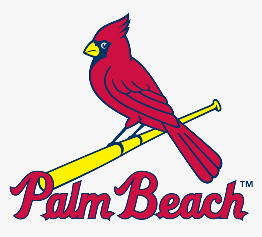 St Louis Cardinals, HD Png Download, Free Download
